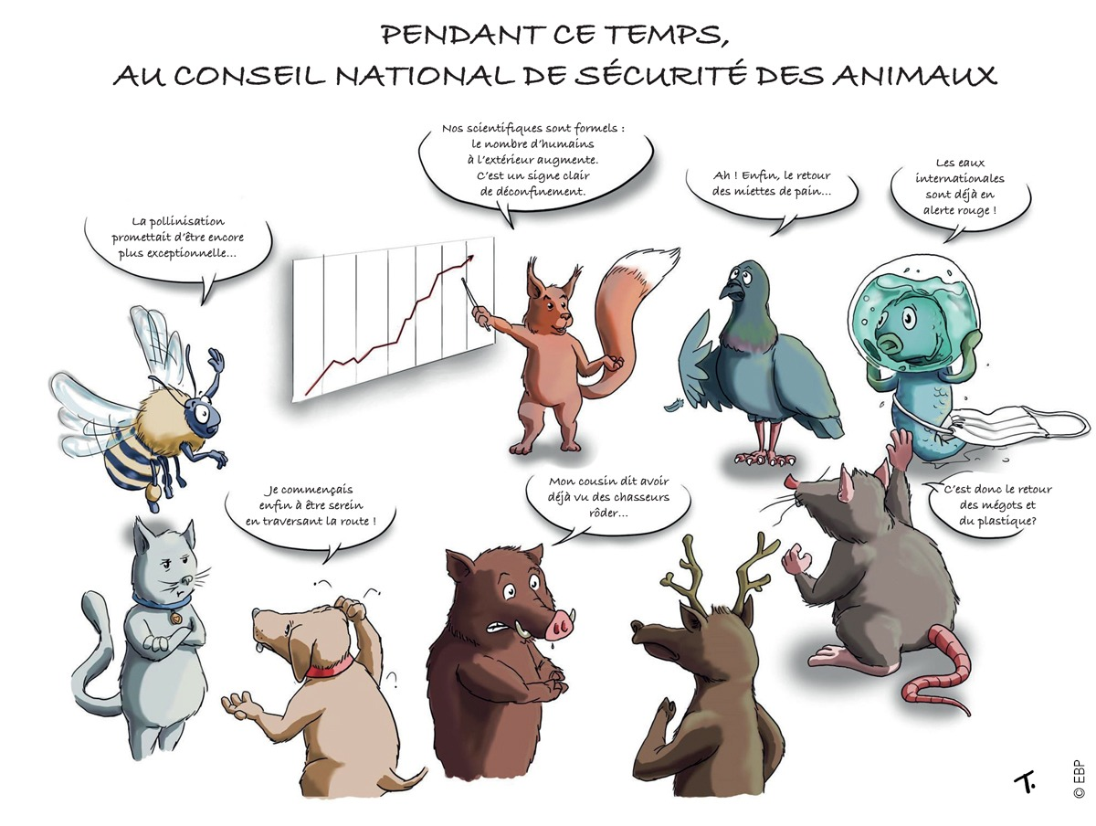 Illustration-signee_ Sustainable2020-FR (2)